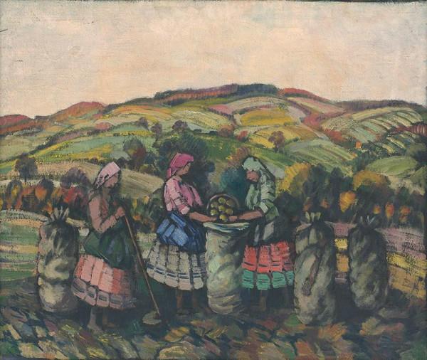 Anton Jasusch – Zber zemiakov