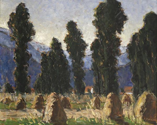 Jozef Kollár – Topole za humnami