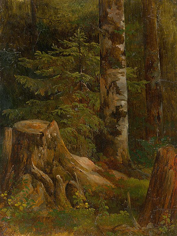 Friedrich Carl von Scheidlin – Vnútro ihličnatého lesa