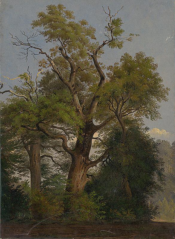 Friedrich Carl von Scheidlin – Stromy