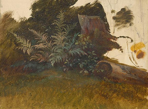 Friedrich Carl von Scheidlin – Horský porast