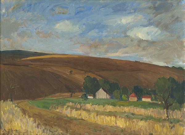Martin Tvrdoň – Moravianske polia
