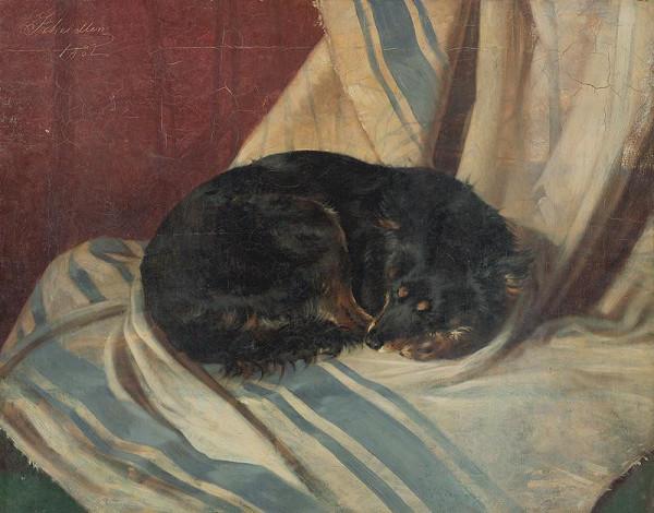 Friedrich Carl von Scheidlin – Štúdia ležiaceho psíka