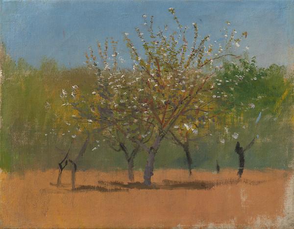 Ladislav Mednyánszky - Rozkvitnuté stromy