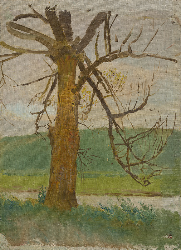 Ladislav Mednyánszky - Strom pri rieke