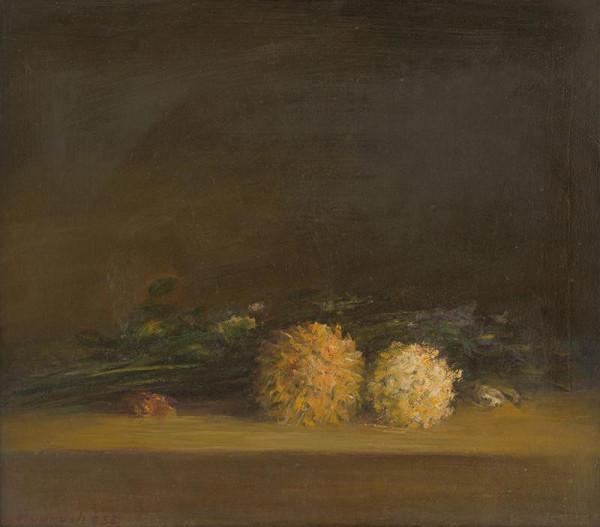 Ján Mudroch – Štúdia chryzantém
