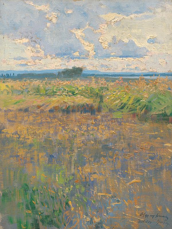 Ferenc Olgyay – Letná krajina