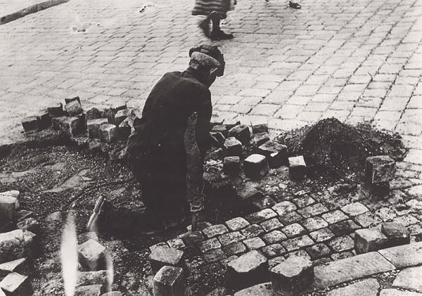 Irena Blühová – Dláždič