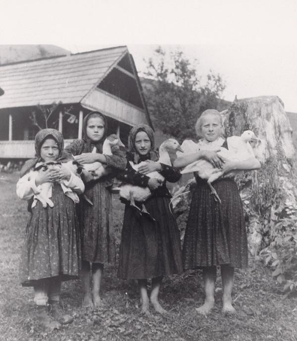 Irena Blühová – Pastierky husí