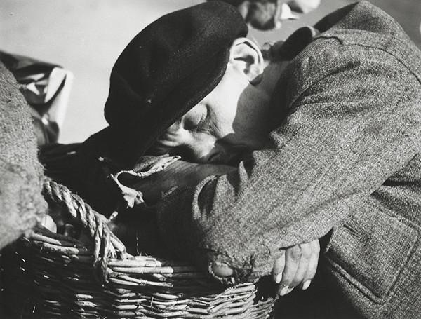 Štefan Tamáš - Na trhu III.