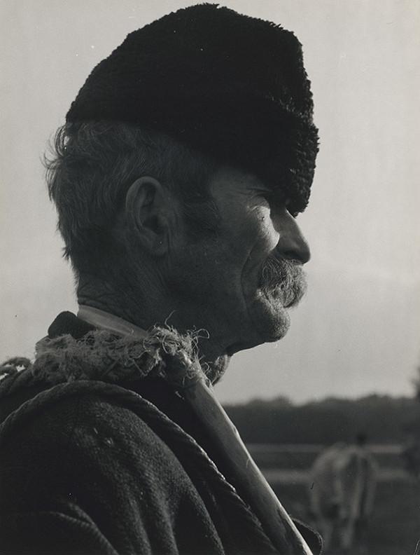Štefan Tamáš - Portrét starca