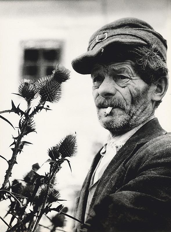 Štefan Tamáš – Portrét starca II.