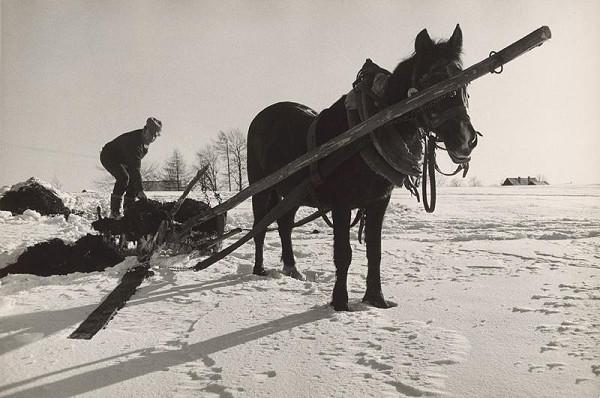 Pavol Breier - Zimný deň III.