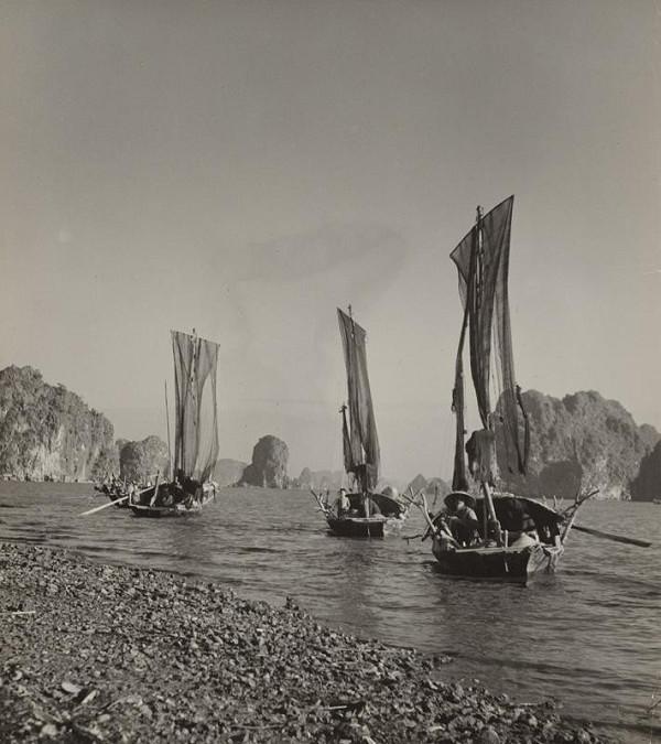 Ján Cifra - Vietnam. Dobrý úlovok