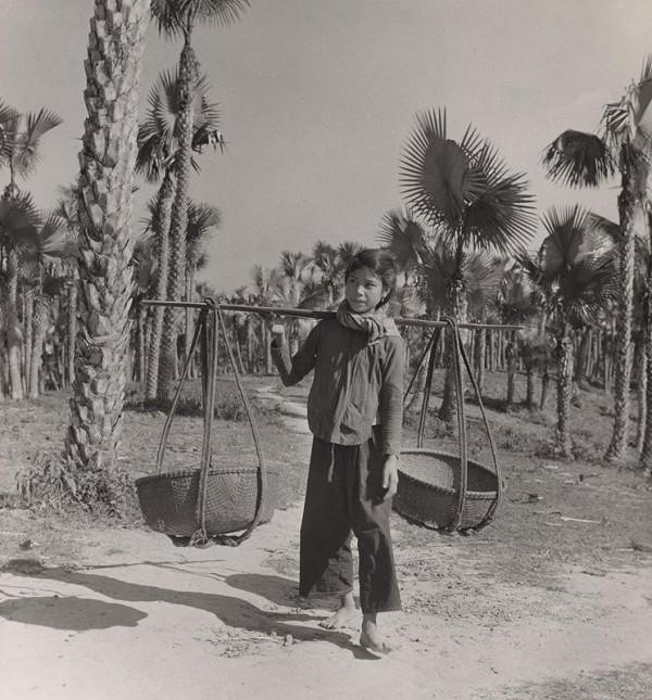 Ján Cifra - Vietnam. Cestičkou cez palmový háj