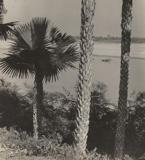 Ján Cifra - Vietnam. Krajina