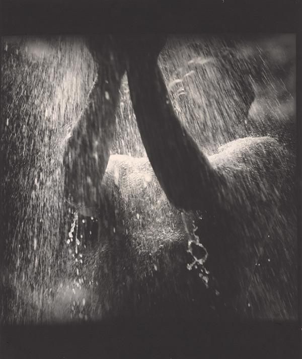 Oľga Bleyová - Bez názvu