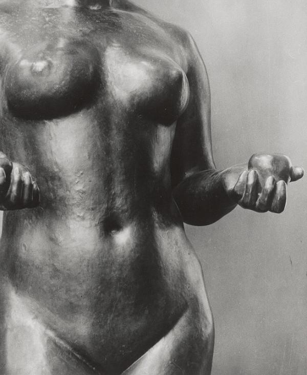 Tibor Honty – Aristide Maillol: Pomona. Detail