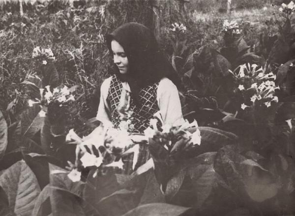 Irena Blühová – Tabak v kvete. Najmladšia tabačiarka