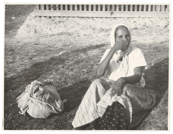 Eugen Žunko – Cigánka