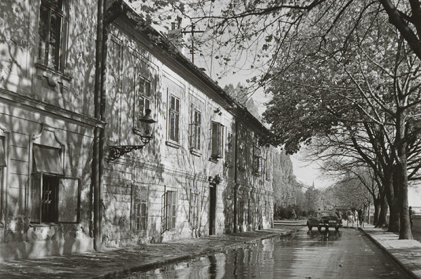 Pavol Poljak - Slnko na Rázusovej ulici v Bratislave