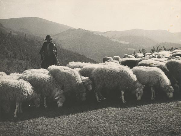 Ladislav Roller – Jar na horách