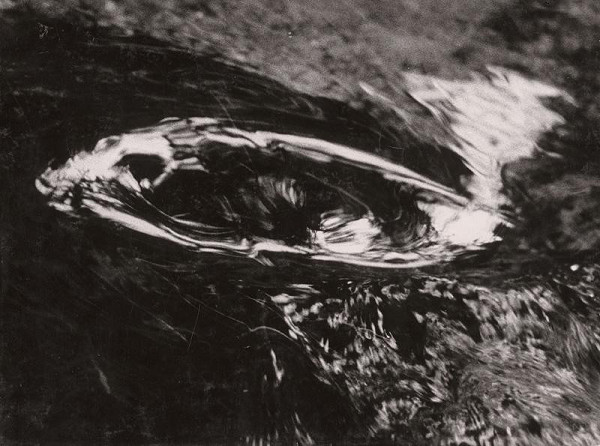 Martin Martinček – Ryba