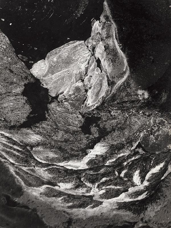 Martin Martinček - Morský vták
