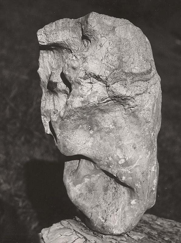 Martin Martinček - Michelangelo