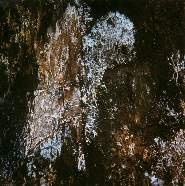 Martin Martinček - Umenie umierajúcich stromov VI.