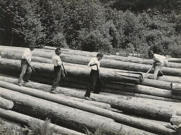 Viliam Malík – Drevorubači (drevári) na Sihle
