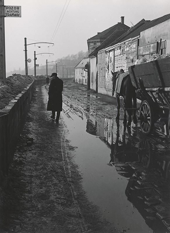 Štefan Tamáš – Po daždi