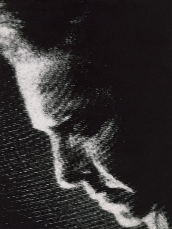 Pavol Breier st. – Ako som ho videl. Herbert von Karajan
