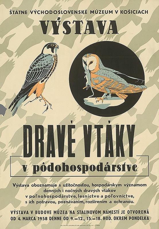 Slovenský autor - Výstava - Dravé vtáky v poľnohospodárstve