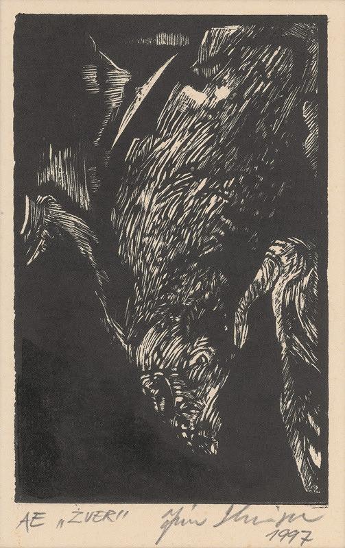 Ján Skrisa – AE. Zver