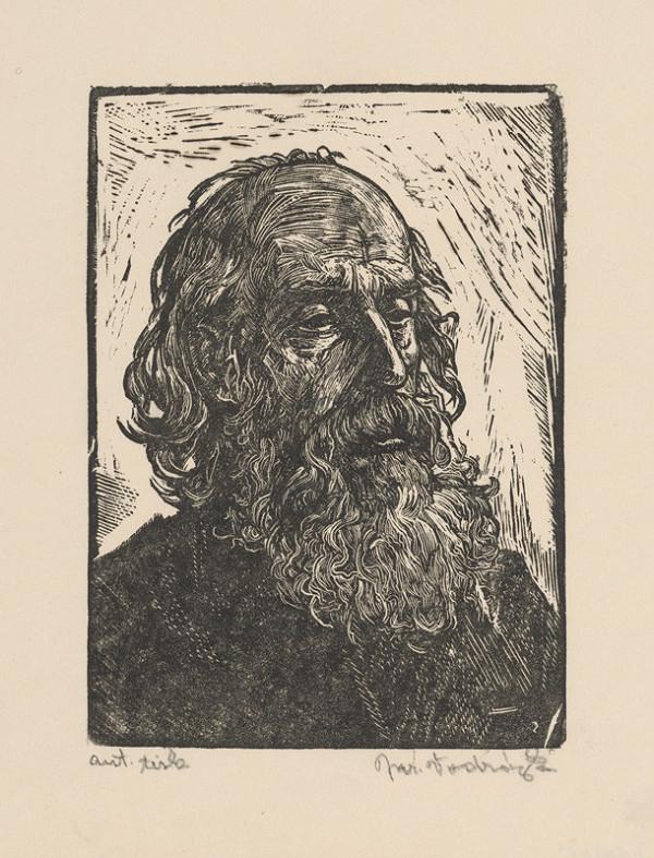Jaroslav Vodrážka – Hlava starca