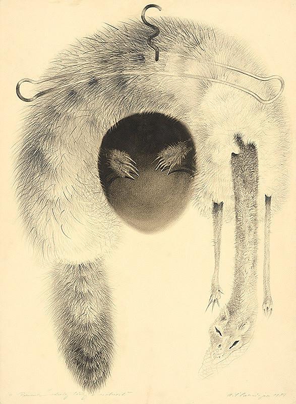 Alžbeta Štefunková-Szabová – Premena odratej líšky v osobnosť