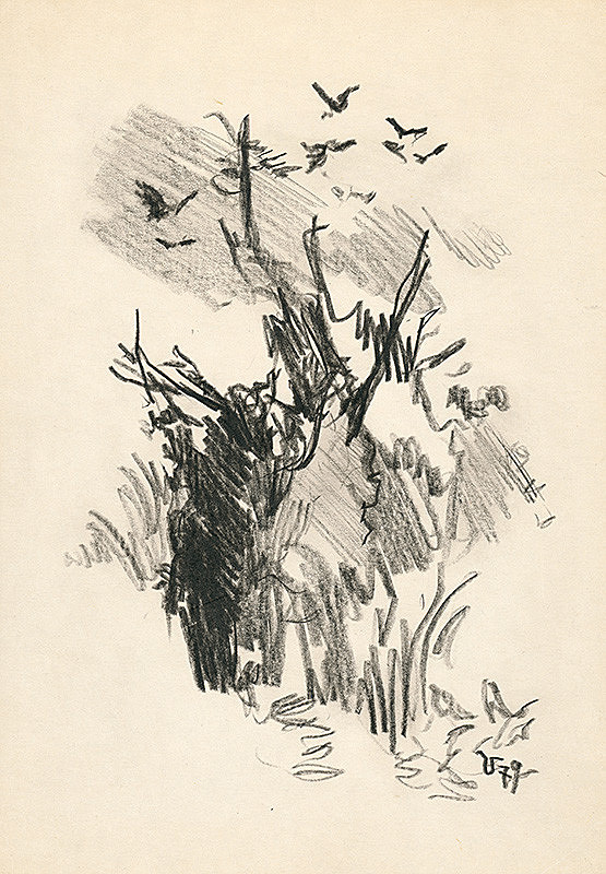 Jaroslav Vodrážka – Vtáky nad bútľavým stromom