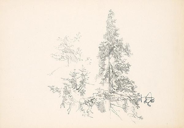 Jaroslav Vodrážka – Stromy