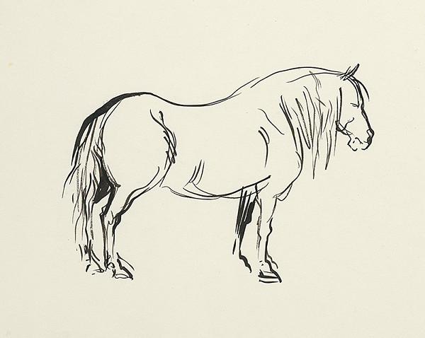 Jaroslav Vodrážka – Kôň z boku