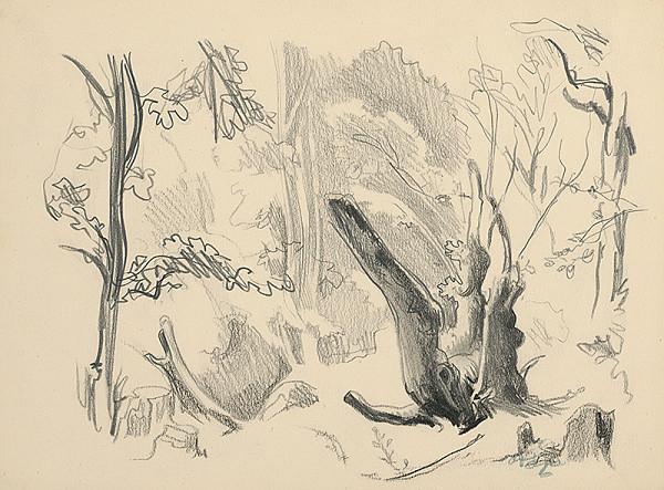 Jaroslav Vodrážka – Kmene stromov