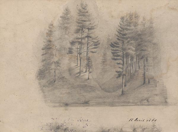 Ladislav Mednyánszky - Štúdia lesa
