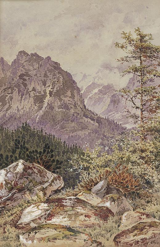 Eugen Wallachy - Studenovodská dolina