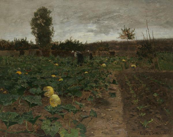 Eugen Jettel - Dýňové pole