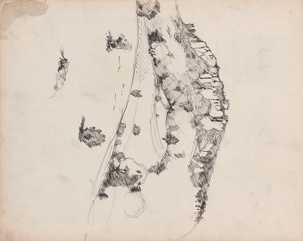 Edmund Gwerk – Skicár 1 Kopec