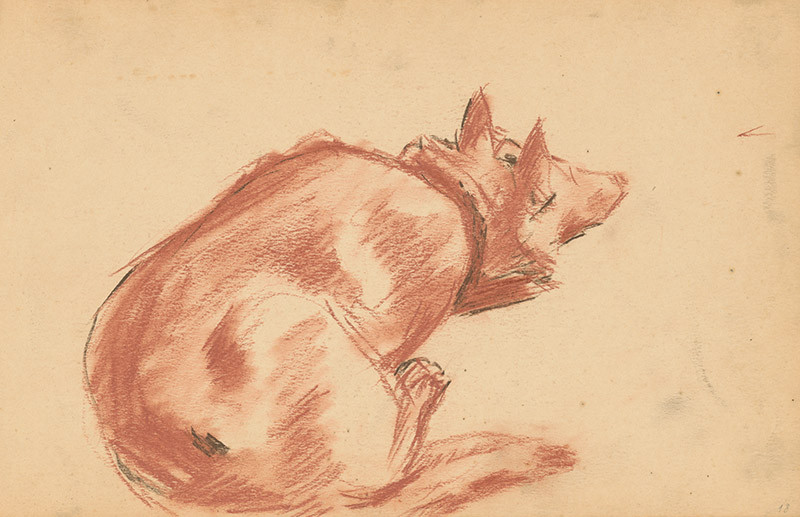 Edmund Gwerk – Skicár 2 Štúdia psa