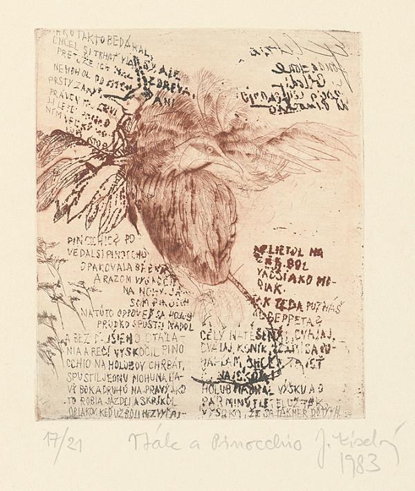 Jana Kiselová-Siteková - Vták a Pinocchio