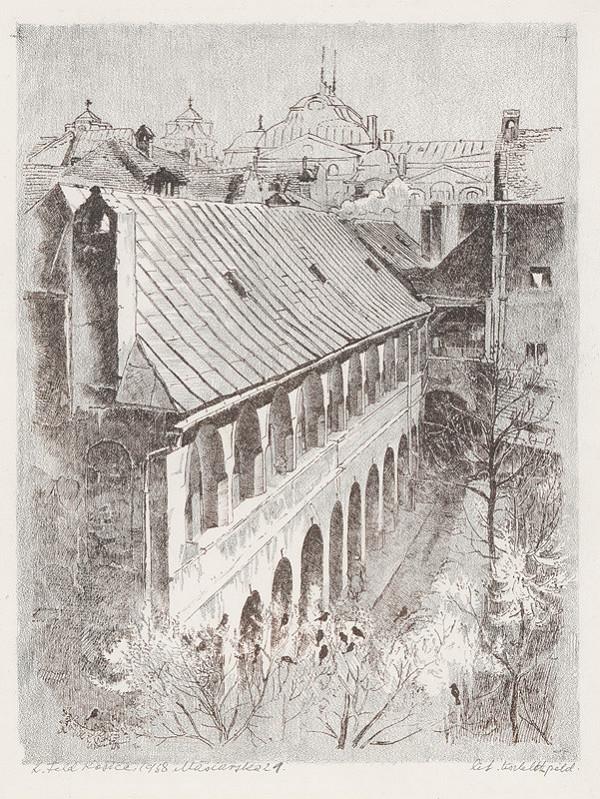 Ľudovít Feld - Dvor na Mäsiarskej ulici v Košiciach