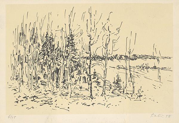 Andrej Doboš – Na okraji lesa