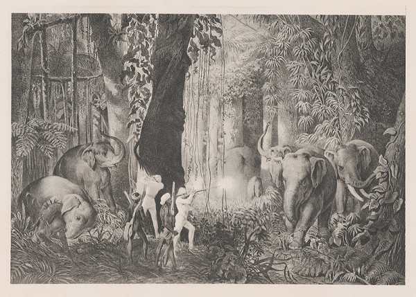Emanuel Andrássy – Lov slonov s honcami. Logalla (Motív z cesty po východnej Indiiv IV.)